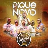 Roda de Samba do Pique Novo (Ao Vivo) de Pique Novo