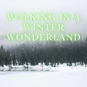 Walking In A  Winter Wonderland de Various Artists