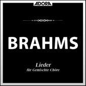 Brahms: Gemische Chöre - Zigeunerlieder, Op. 103 - Gesänge, Op. 91 von Various Artists