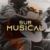 Sur Musical de Various Artists