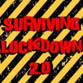Surviving Lockdown 2.0 von Various Artists