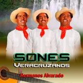 Sones Veracruzanos de Hermanos Alvarado