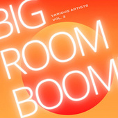 Big Room Boom, Vol. 3 by Various Artists