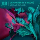 Careless Love by David Hasert