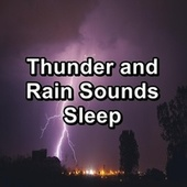 Thunder and Rain Sounds Sleep von Nature Recordings