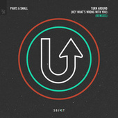 Turn Around (Hey What's Wrong With You) (Remixes) von Phats & Small