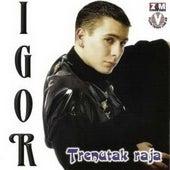 Trenutak raja de Igor Lugonjic