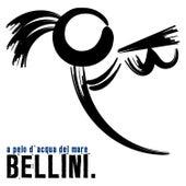 A pelo d'acqua del mare de Bellini