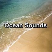Ocean Sounds von Yoga