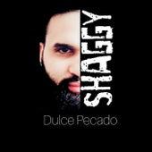 Dulce Pecado by Shaggy