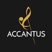 Dzicy są by Studio Accantus