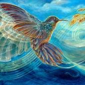 Colibri Dorado de Sage