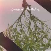 Common Mistletoe de Patti Page, Trini Lopez, Little Anthony