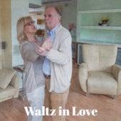 Waltz in Love by Antonio Molina, Los Machucambos, Beny More, Adriano Celentano, Imperio Argentina, Pio Leyva, Fausto Papetti, Big Maybelle