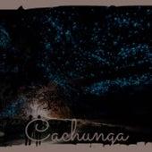 Cachunga de Astrud Gilberto, Raphael, Celia Cruz, Bob Azzam, Joan Baez, Julio Jaramillo, Antonio Molina, Yma Sumac