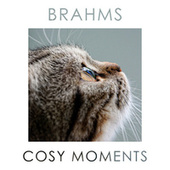 Brahms Cosy Moments by Johannes Brahms