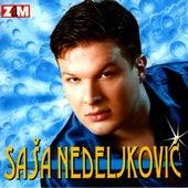 Nek ti drugi robuje de Sasa Nedeljkovic