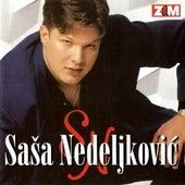 Sto dukata de Sasa Nedeljkovic