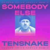 Somebody Else (Shadow Child Apollo Remix) von Tensnake