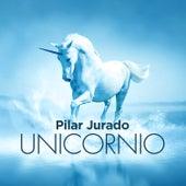 Unicornio de Pilar Jurado