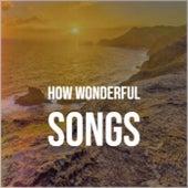 How Wonderful Songs von Various Artists