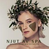 Njut av spa-behandlingar med naturljud von Blandade Artister