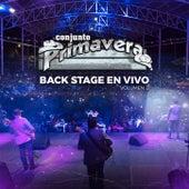 Backstage En Vivo, Vol. 2 de Conjunto Primavera