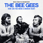 How Can You Mend A Broken Heart von Bee Gees