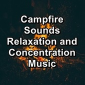 Campfire Sounds Relaxation and Concentration Music de Focusity