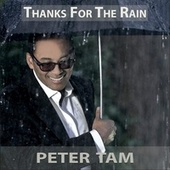 Thanks For The Rain by Peter Tam
