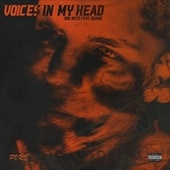 Voices in My Head (feat. BigMoe) fra Ddb Ricco