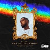 Chasing Rainbows by Sachiv