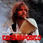 The Sound of Tony Esposito de Tony Esposito