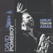 Great Tenor Arias by Newfoundland Symphony Orchestra David Pomeroy