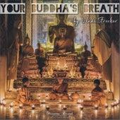 Your Buddha's Breath (Late Night Mix) von Vladi Strecker