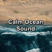 Calm Ocean Sound von Yoga Shala