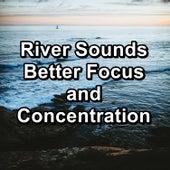 River Sounds Better Focus and Concentration von Yoga Flow