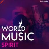 World Music Spirit by Suhel Rais Khan