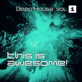 This is Awesome - Deep House Vol. 1 by Various Artists