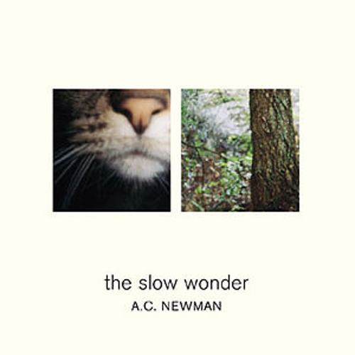 The Slow Wonder by A.C. Newman
