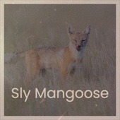 Sly Mangoose by John Holt, Bob Marley, Jackie Mittoo, The Gaylads, The Uniques, Derrick Morgan