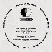 Meeting of the Minds, Vol. 4 by Various Artists