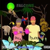 Powers de Falcons