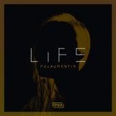 Life - The 4 Seasons Remixes de DeLaurentis