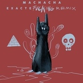 Exactefuckingremix by Machacha