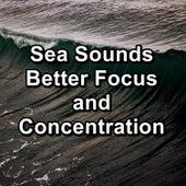 Sea Sounds Better Focus and Concentration von Yoga Shala