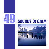 49 Sounds of Calm by Various Artists