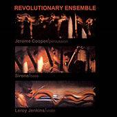 Vietnam by Revolutionary Ensemble