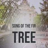Song of the Fir Tree von Jane Froman, The New Christy Minstrels, His Kingdom of Love Childrens Choir, Mohammed Rafi, Tennessee Ernie Ford, The Royal Philharmonic Orchestra, Billy Mayerl, Ray Anthony, The Lennon Sisters