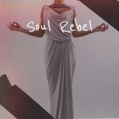 Soul Rebel by Bob Marley, Byron Lee, The Royals, Derrick Morgan, The Gaylads